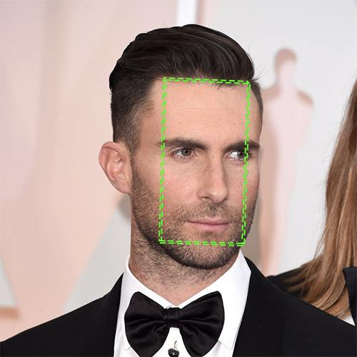 Adam Levine, visage en rectangle